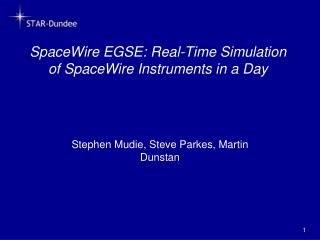 SpaceWire EGSE: Real-Time Simulation of SpaceWire Instruments in a Day