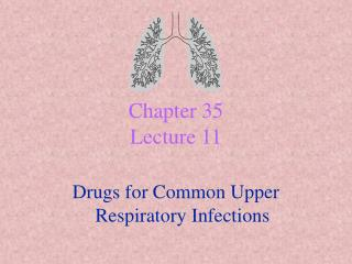 chapter 35 lecture 11