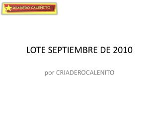 LOTE SEPTIEMBRE DE 2010 GALLOS EN VENTA Y GALLINAS D PRIMERA