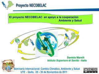 Daniela Marsili Istituto Superiore di Sanità - Italia