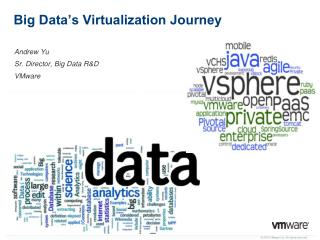 Big Data's Virtualization Journey
