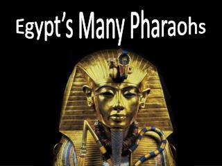 Egypt's Many Pharaohs