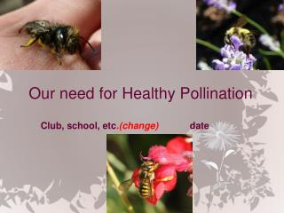Our need for  Healthy Pollination