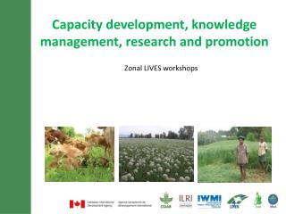Capacity development, knowledge management, research and promotion