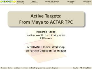 Active Targets: From Maya to  ACTAR TPC
