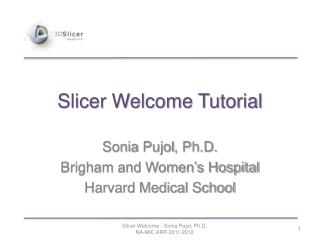 Slicer Welcome Tutorial