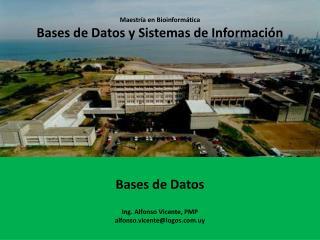 Maestría en Bioinformática Bases de Datos y Sistemas de Información Bases de Datos Ing. Alfonso Vicente, PMP alfonso.vi