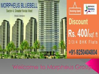 Morpheus Group Noida