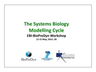 The Systems Biology Modelling  Cycle EBI- BioPreDyn  Workshop 12-15  May ,  2014,  UK
