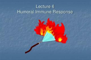 lecture 6 humoral immune response