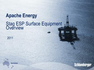 Apache Energy Stag ESP Surface Equipment Overview