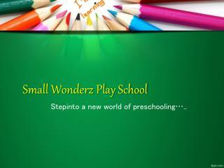 Small Wonderz Play School