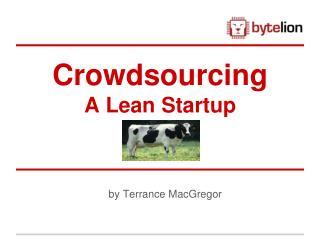 Crowdsourcing A Lean Startup