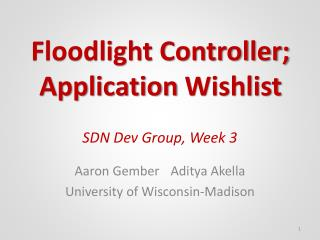 SDN Dev Group, Week  3