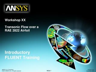 Workshop XX Transonic Flow over a  RAE 2822 Airfoil