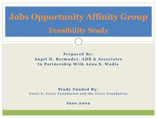 Jobs Opportunity Affinity  Group Feasibility Study