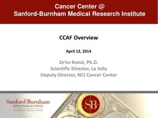 CCAF Overview April 13,  2014 Ze'ev Ronai,  Ph.D . Scientific Director, La Jolla Deputy Director, NCI Cancer Center