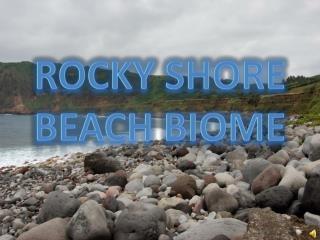 Rocky Shore Beach Biome