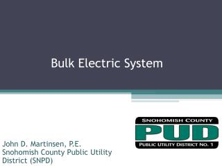 Bulk Electric System