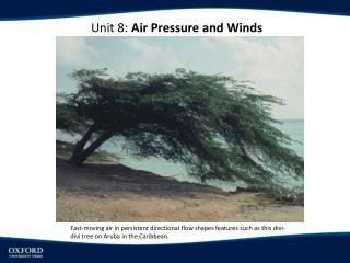 Unit 8:  Air Pressure and Winds