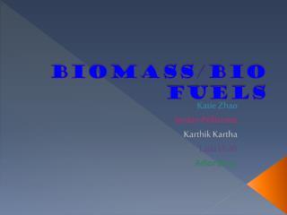Biomass/Bio Fuels
