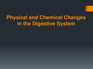 Physical and Chemical Changes in the Digestive System