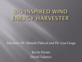 Bio-Inspired wind energy harvester