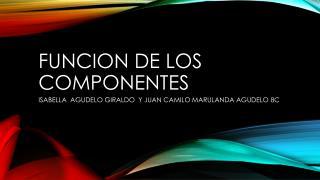 FUNCION DE LOS COMPONENTES