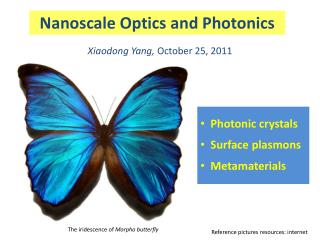 Nanoscale Optics and Photonics