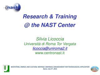 Silvia Licoccia Università di Roma Tor Vergata  licoccia@uniroma2.it www.centronast.it