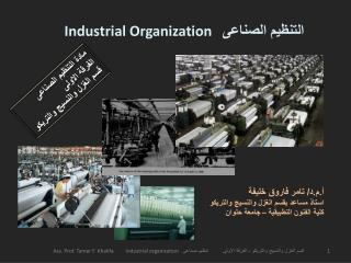 Industrial Organization    التنظيم الصناعى