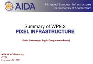 Summary of WP9.3 PIXEL INFRASTRUCTURE
