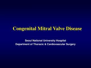 congenital mitral valve disease