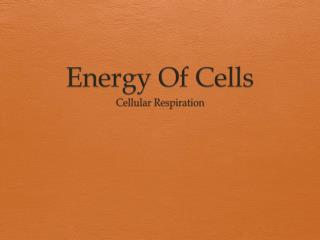 Energy Of Cells