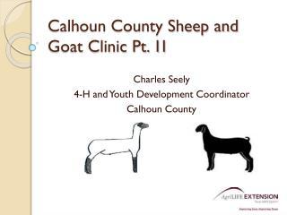 Calhoun County Sheep and Goat Clinic Pt. 1I