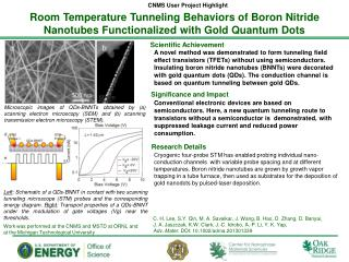 Room Temperature Tunneling Behaviors of Boron Nitride Nanotubes  Functionalized  with Gold Quantum Dots