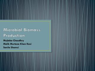 Microbial Biomass Production