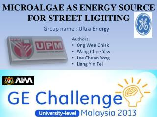 MICROALGAE AS ENERGY SOURCE FOR STREET LIGHTING