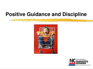 positive guidance and discipline