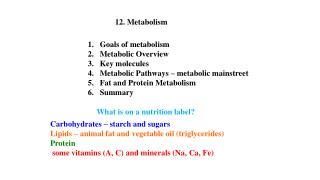 12. Metabolism