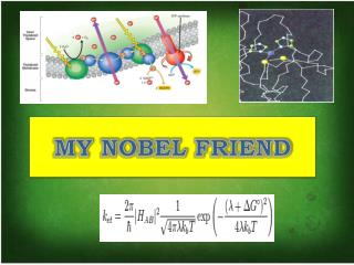 MY NOBEL FRIEND