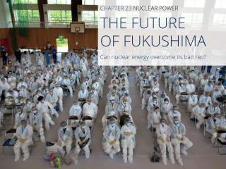 THE FUTURE  OF FUKUSHIMA