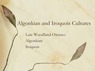 algonkian and iroquois cultures