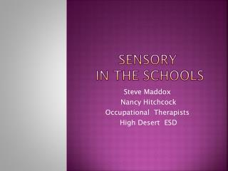 Sensory   in the schools
