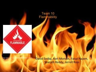 Team 10 Flammability