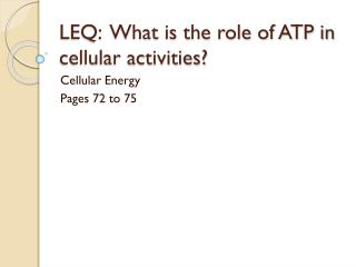 LEQ:  What is the role of ATP in  cellular activities?