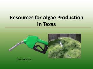 Resources for Algae Production in Texas