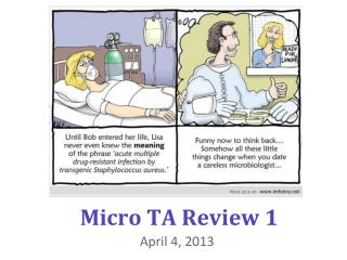Micro TA Review 1