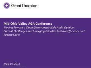 Government-Wide  Financial Management Grant Thornton Panel
