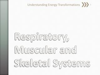 Respiratory, Muscular and Skeletal Systems